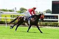 Miss Penfold Takes Home First Place At Doomben