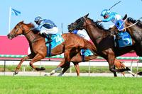 Guard Of Honour Wins At The Gold Coast