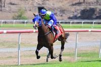 Winning Streak For Seeyaron, Winning At Kilcoy