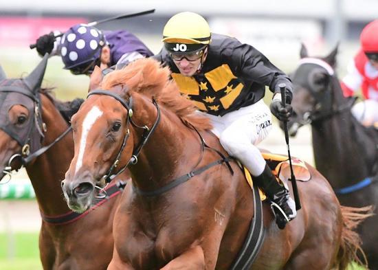 Racecourse Road Wins at Doomben