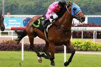 Fastnet Dragon hot favourite for Singapore Derby