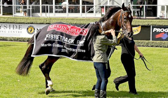 Jaws Of Steel lands Mornington Sires'