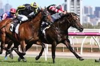 Lordy gives us the best New Year's Day present at Flemington!