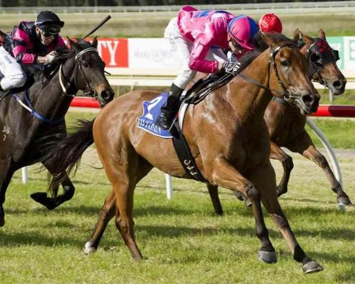 SCAMANDRIUS SUPER IN MAIDEN VICTORY