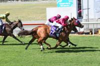 AUSSIE DAY HONOURS FOR JETOOMY AND GONDO ROSE