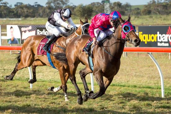 HOPETOUN IN LADIES DAY HONOURS