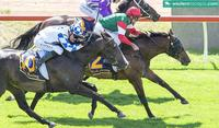 STRATOCREED TOO GOOD AT PINJARRA