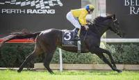 TRADESMAN SUPERB IN ASCOT RETURN