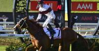 Eagle Way Wins Qld Derby
