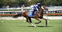 TEAM GUY TO MAKE RACE DAY DECISION WITH TALENTED FILLY NIVO