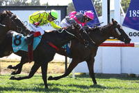 Wilde Racing home bred breaks maiden at Ararat