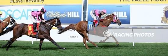 SurPrize win at Moonee Valley