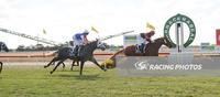 Busy Easter Weekend- sees Wilde Racing bring up 52 winners