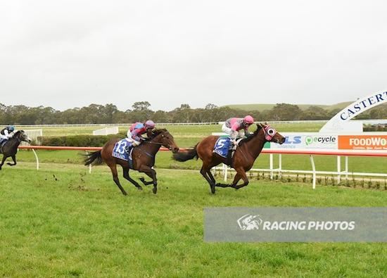 Tommy Standup and Hecta win at Casterton