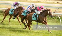 A Purrfect Double at Stawell
