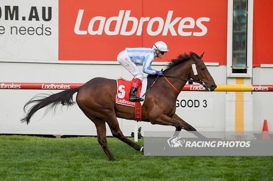 Moonee Valley Victory For Dodging Bullets