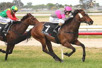 Purrfect Trick wins two on the trot