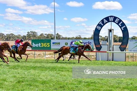 Consistent Linen King wins at Stawell