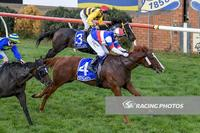 Terang Cup Day Vicotry for Ammoudi Bay