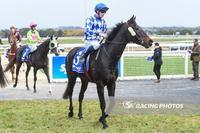 Souffrant wins on Ballarat Synthetic