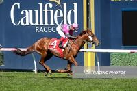 Another Coldie wins on Memsie Stakes day