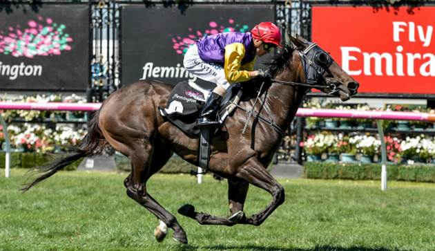 Lake Como wins at Flemington AGAIN!