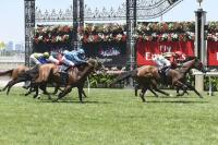 Miss Softhands makes it a triple treat at Flemington