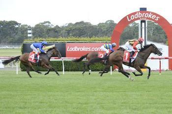 Miss Softhands stays in winning way at Sandown
