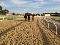 New polytrack at Caulfield.JPG