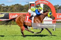 Domino Vitale has strong win at Sandown