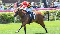 Navagio impresses first-up at Flemington