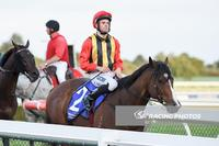 Zac Spain and Kazio make it 3 from 3 at Sandown