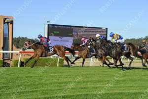HIGH RUSH remains unbeaten this prep after Wyong win!