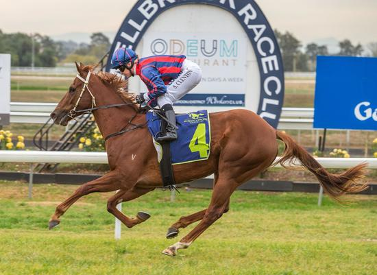 ​Star Alibi sparkles on debut!