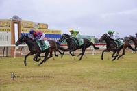 ​Myboycolly scores another victory at Cessnock