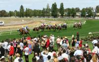 TEDDY BEAU GETS A MELBOURNE CUP DAY WIN
