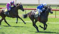 Melbourne Cup Day Delights for Makaties Keeper