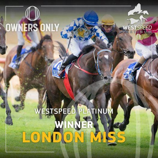 London Miss Wins the Pearl Breeders Classic
