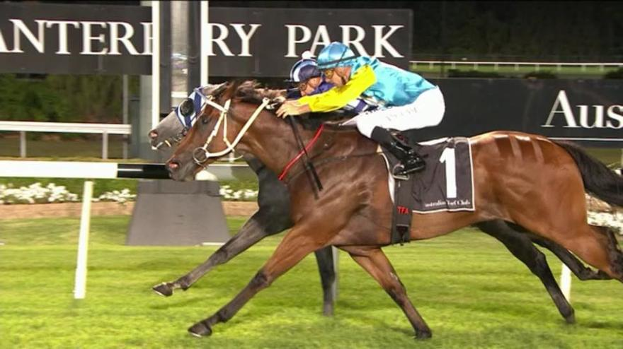 Viceroy Continues his Love-Affair with Canterbury