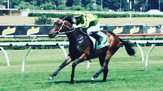 Racing NSW take a Bow