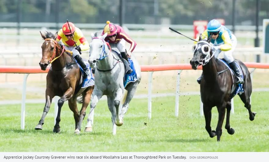 Canberra trainer Luke Pepper savours his own 'Melbourne Cup win'