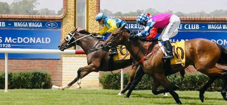 A Treble to Remember at Wagga
