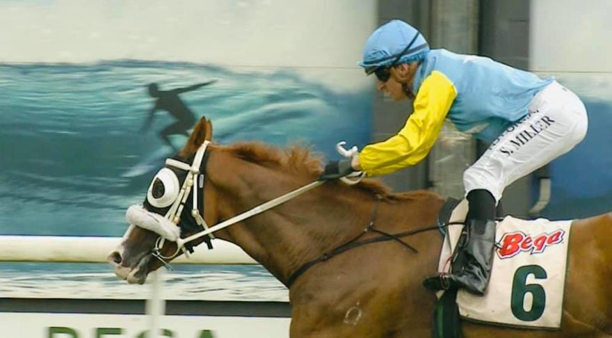 Fox Beat wins at Sapphire Coast