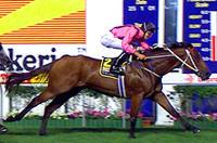 Bomber Bill - MVRC Australia Stakes.jpg