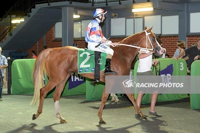Tea Tree Gully Salutes at Cranbourne