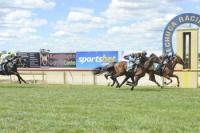 Mists Of Avalon shows plenty at Echuca