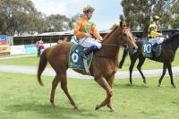Echuca raid produces double success