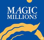 2013 MAGIC MILLIONS SALES