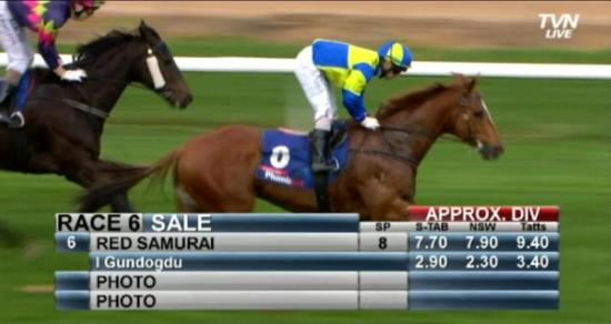 Stable Cashes in at Sale