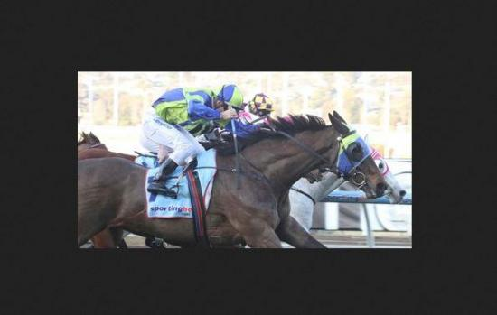 A Flying finish lands the Mildura Cup